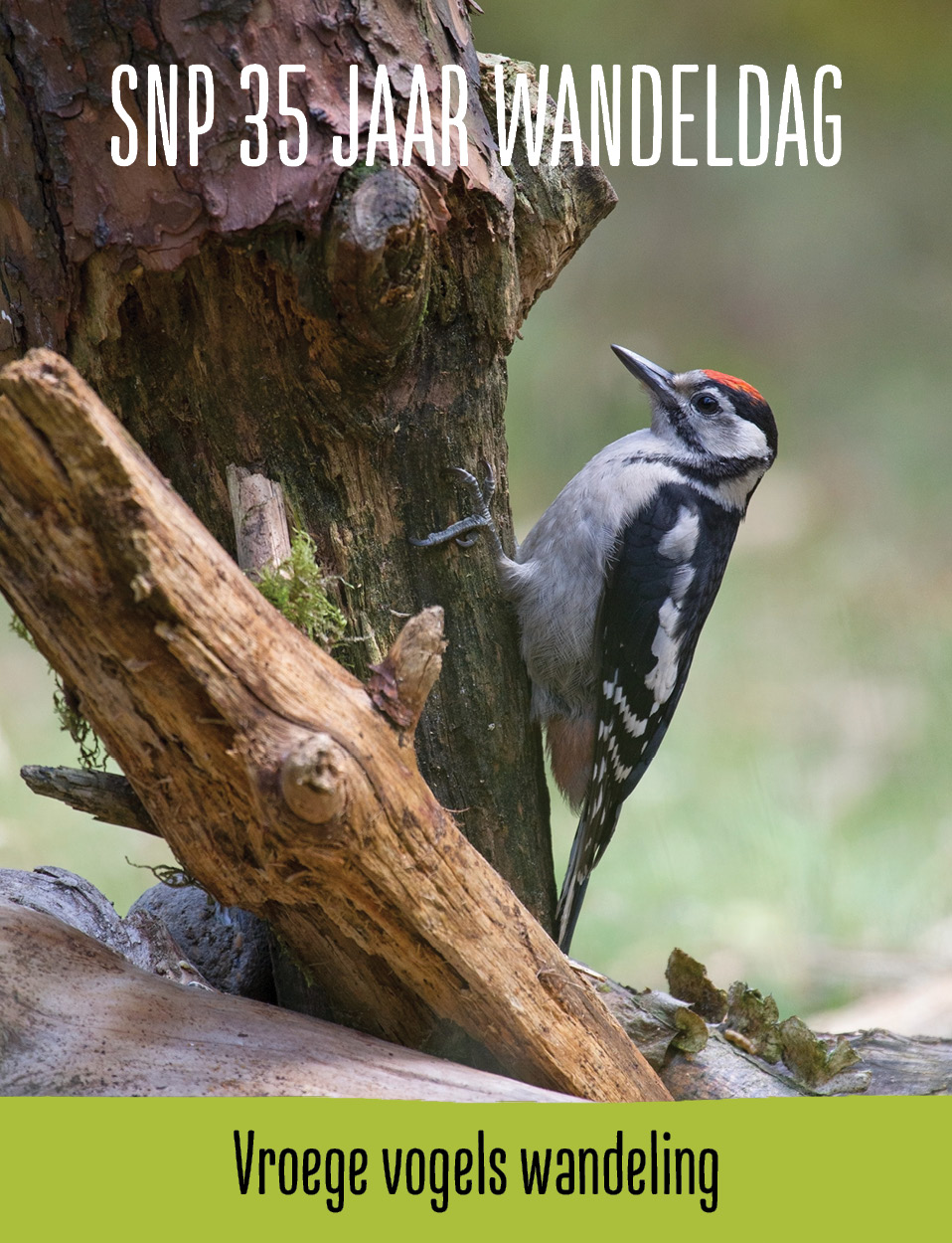 Wandeling 'Vroege Vogels'